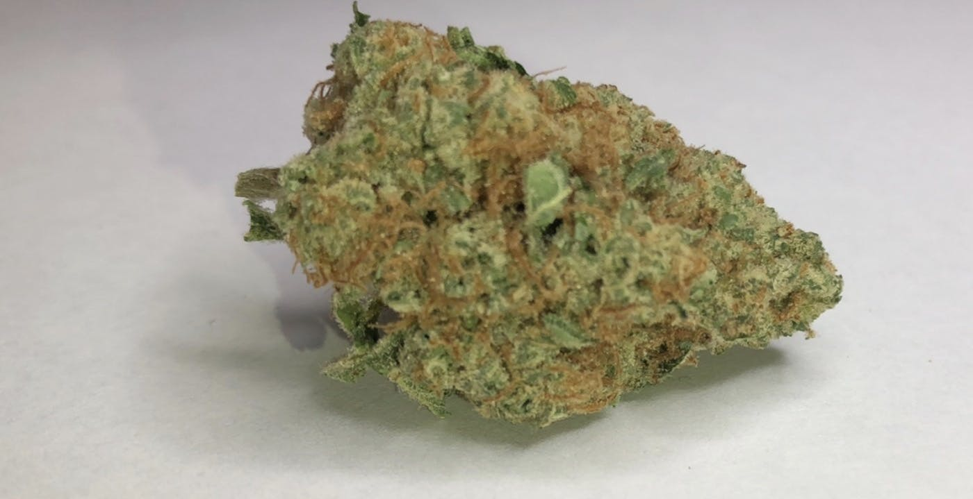marijuana-dispensaries-549-n-western-ave-los-angeles-24100oz-true-og