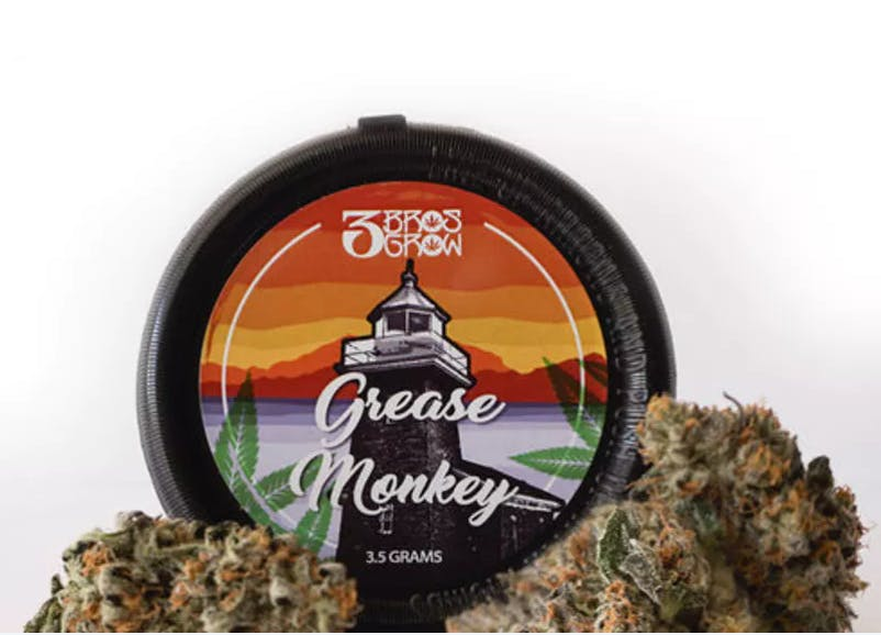 marijuana-dispensaries-eco-cannabis-in-oakland-3-bros-grow-grease-monkey
