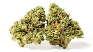 marijuana-dispensaries-29-franklin-st-needham-heights-3-chems