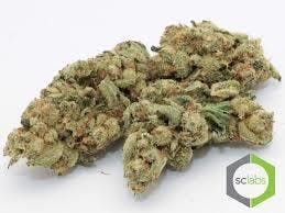 indica-3-kings-og-cannabis-cup-winner5g-for-35