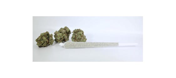marijuana-dispensaries-2100-east-112th-avenue-235-northglenn-303-kush-pbj-pre-roll