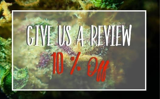 marijuana-dispensaries-kaya-cannabis-colfax-med-in-denver-a-review-for-10-25-off-entire-purchase