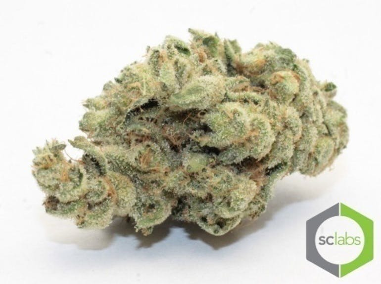 marijuana-dispensaries-42210-roick-drive-unit-12-temecula-acai-berry