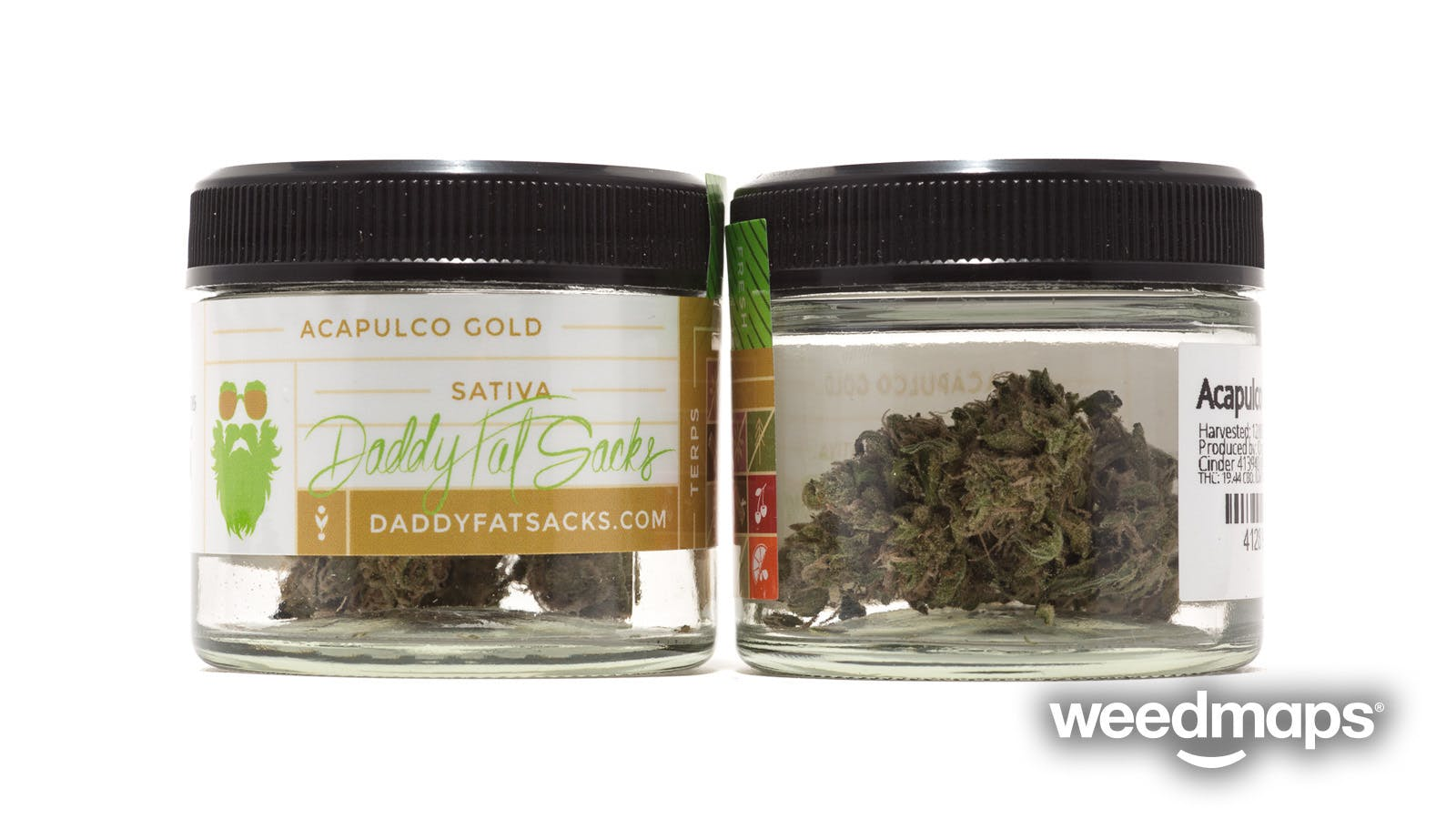 sativa-acapulco-gold-daddy-fat-sacks