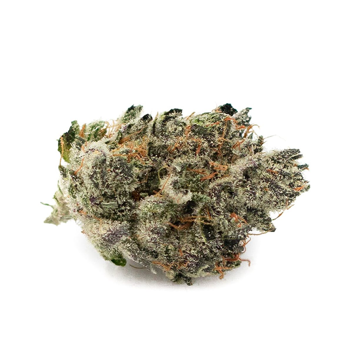 marijuana-dispensaries-silver-sage-wellness-in-las-vegas-alien-cookies