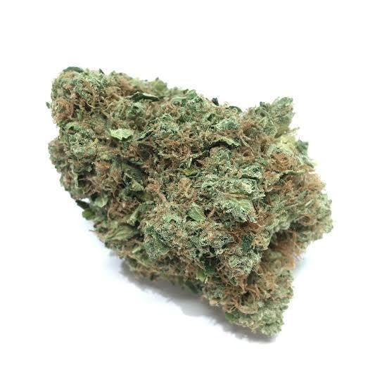 marijuana-dispensaries-temecula-valley-patient-care-in-temecula-alien-o-g