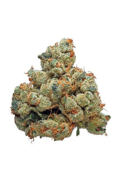 marijuana-dispensaries-82-s-federal-blvd-denver-alien-rock