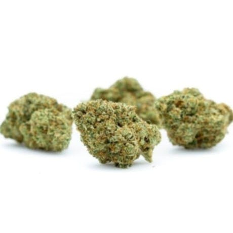 marijuana-dispensaries-8157-wing-ave-el-cajon-alpha-og-bubonic