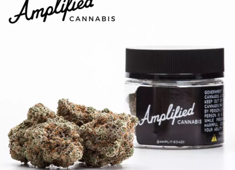 marijuana-dispensaries-eco-cannabis-in-oakland-amplified-super-gelato