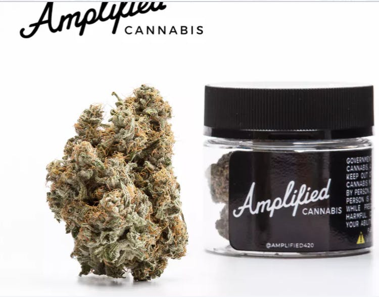 marijuana-dispensaries-2433-telegraph-avenue-oakland-amplified-white-rhino