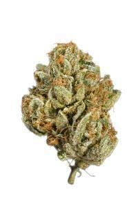 marijuana-dispensaries-10717-venice-blvd-los-angeles-ancient-o-g