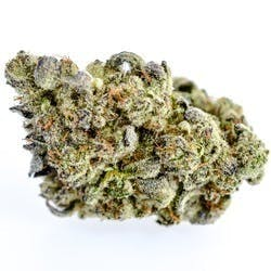 marijuana-dispensaries-healing-tree-wellness-center-in-detroit-animal-mints