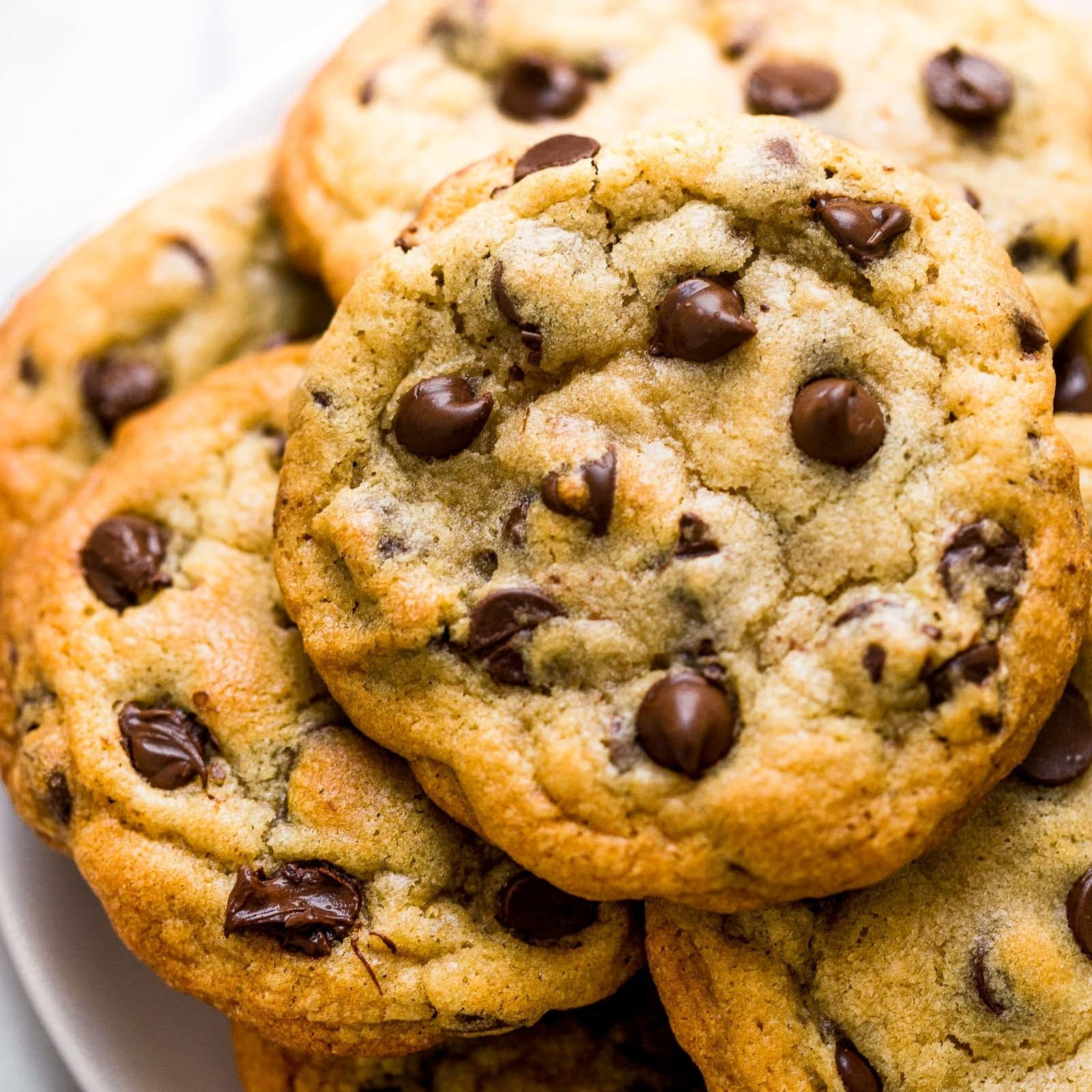 edible-arcadia-brands-chocolate-chip-cookie-10mg-thc-each
