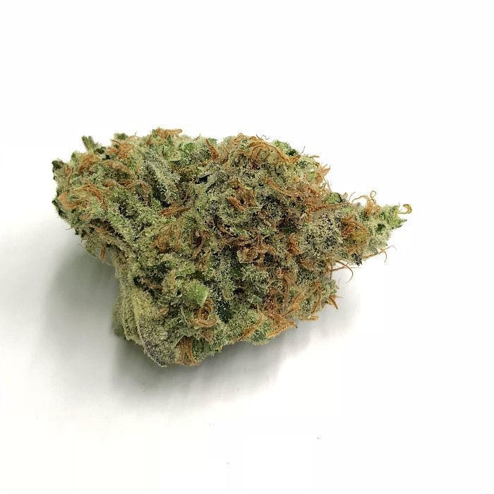 indica-area-51-10g-for-2495