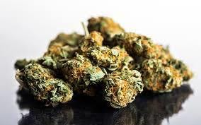 marijuana-dispensaries-2618-e-foothill-blvd-unit-c-san-bernardino-atomic-glue-mids