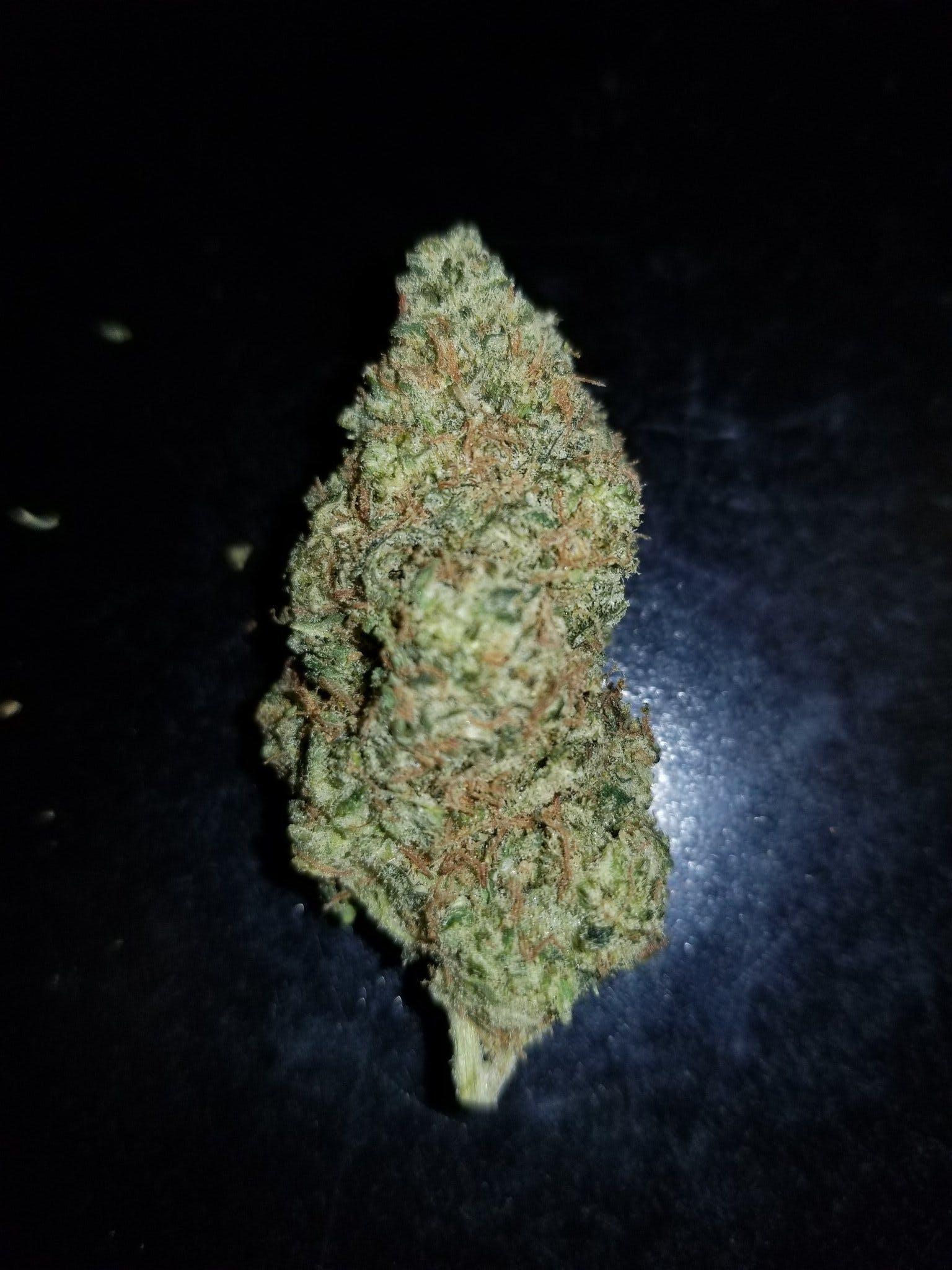 hybrid-banana-dream