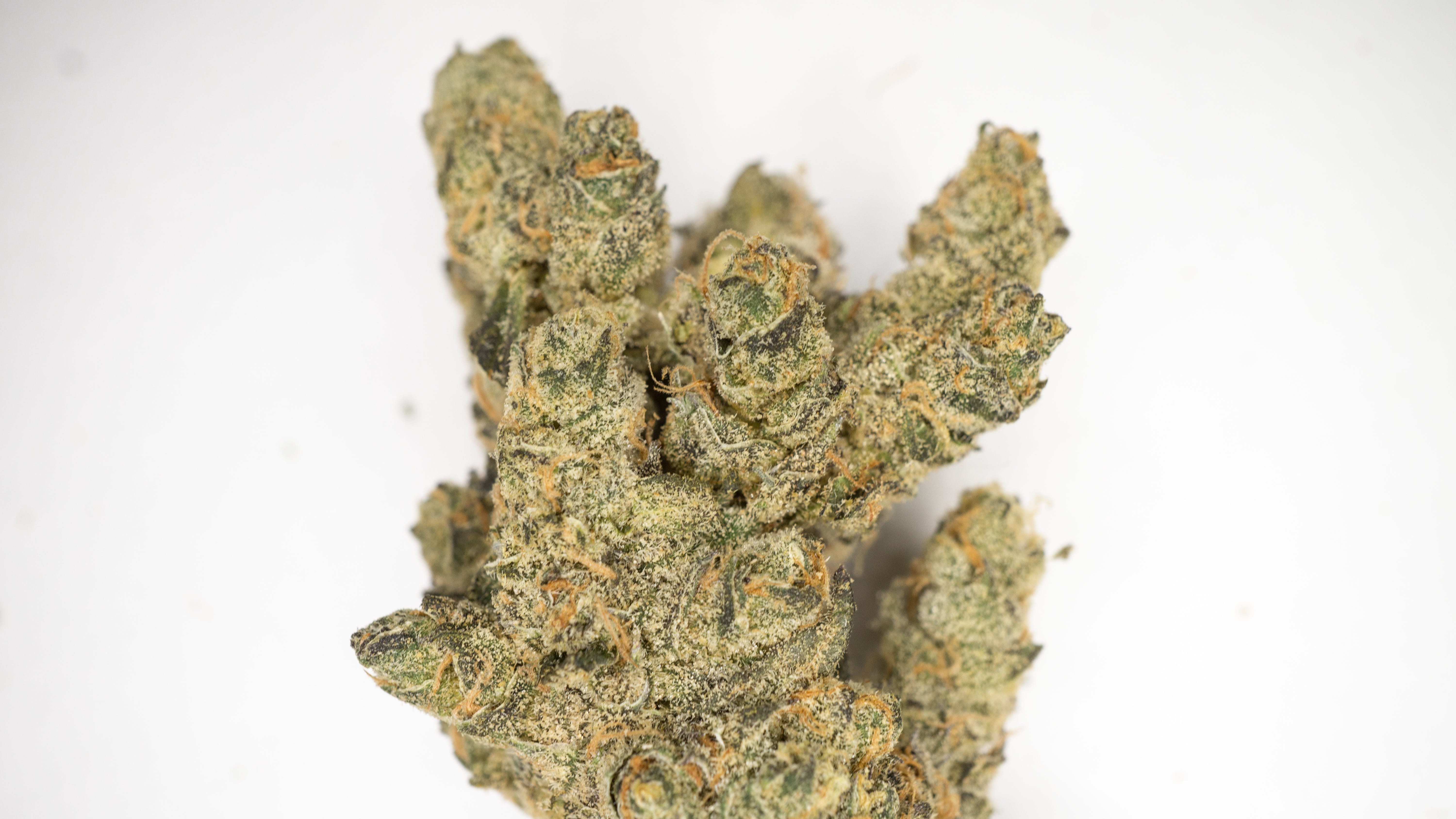 marijuana-dispensaries-cathedral-city-care-collective-north-in-cathedral-city-banana-fig-3-5g