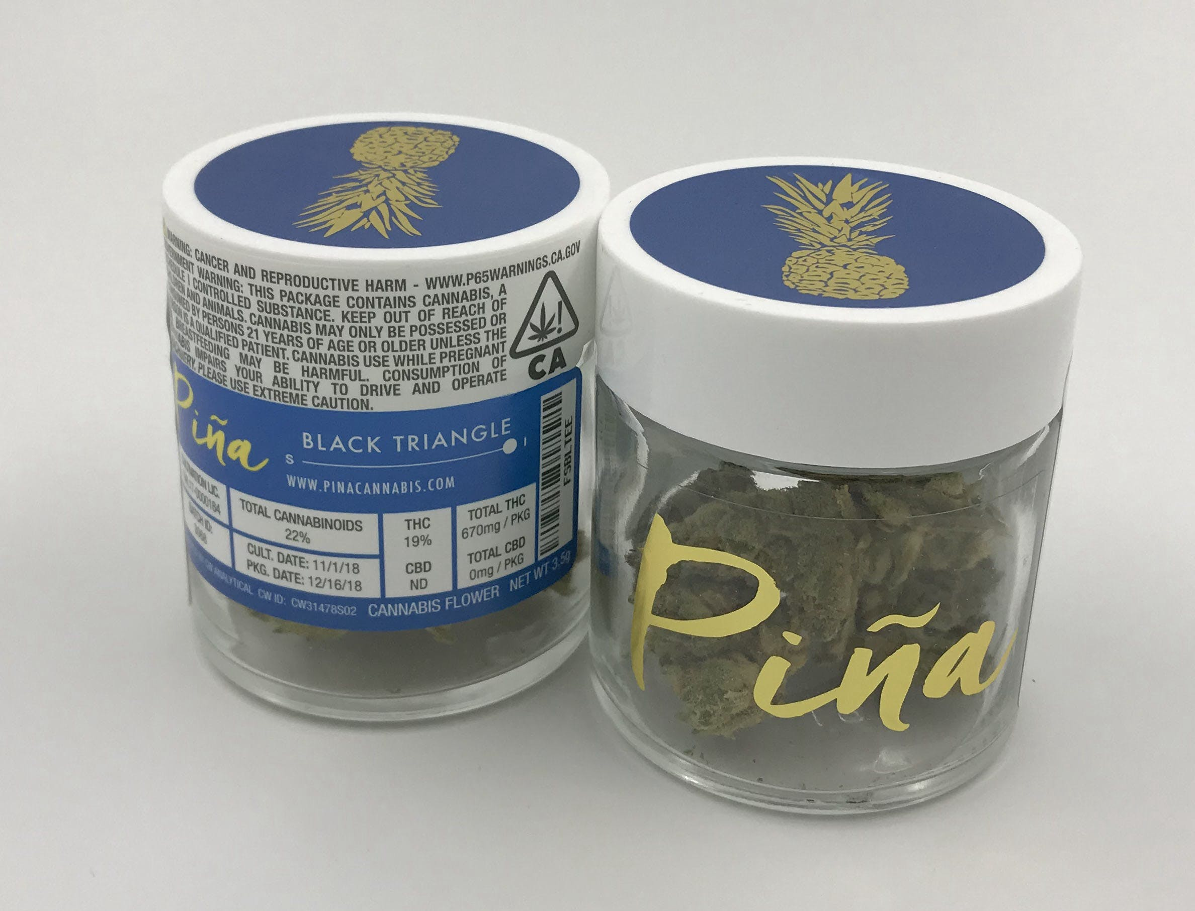 indica-black-triangle-by-pina