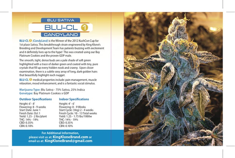 marijuana-dispensaries-ca-collective-in-san-jose-blu-cl-candyland