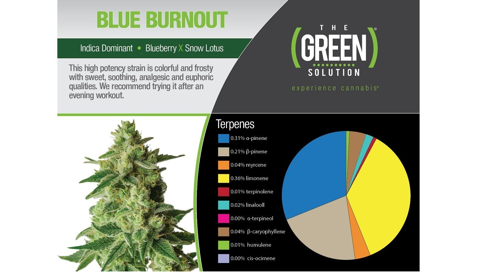 marijuana-dispensaries-the-green-solution-union-station-in-denver-blue-burnout