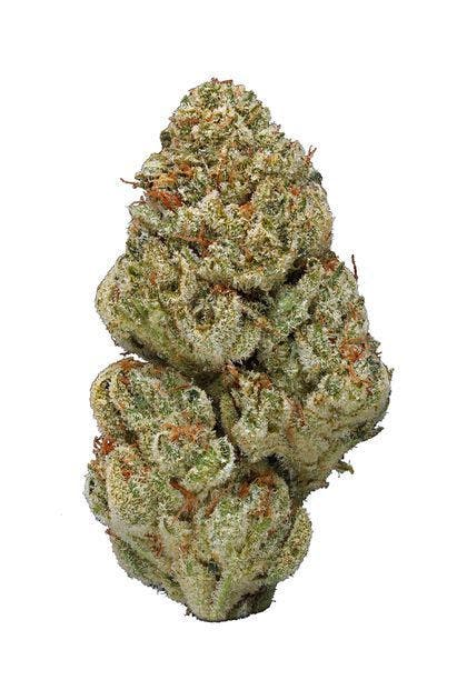 marijuana-dispensaries-house-of-zen-in-detroit-blue-og