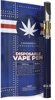concentrate-blue-razz-indica-disposable-vape-pen-by-cannamerica-0-5g
