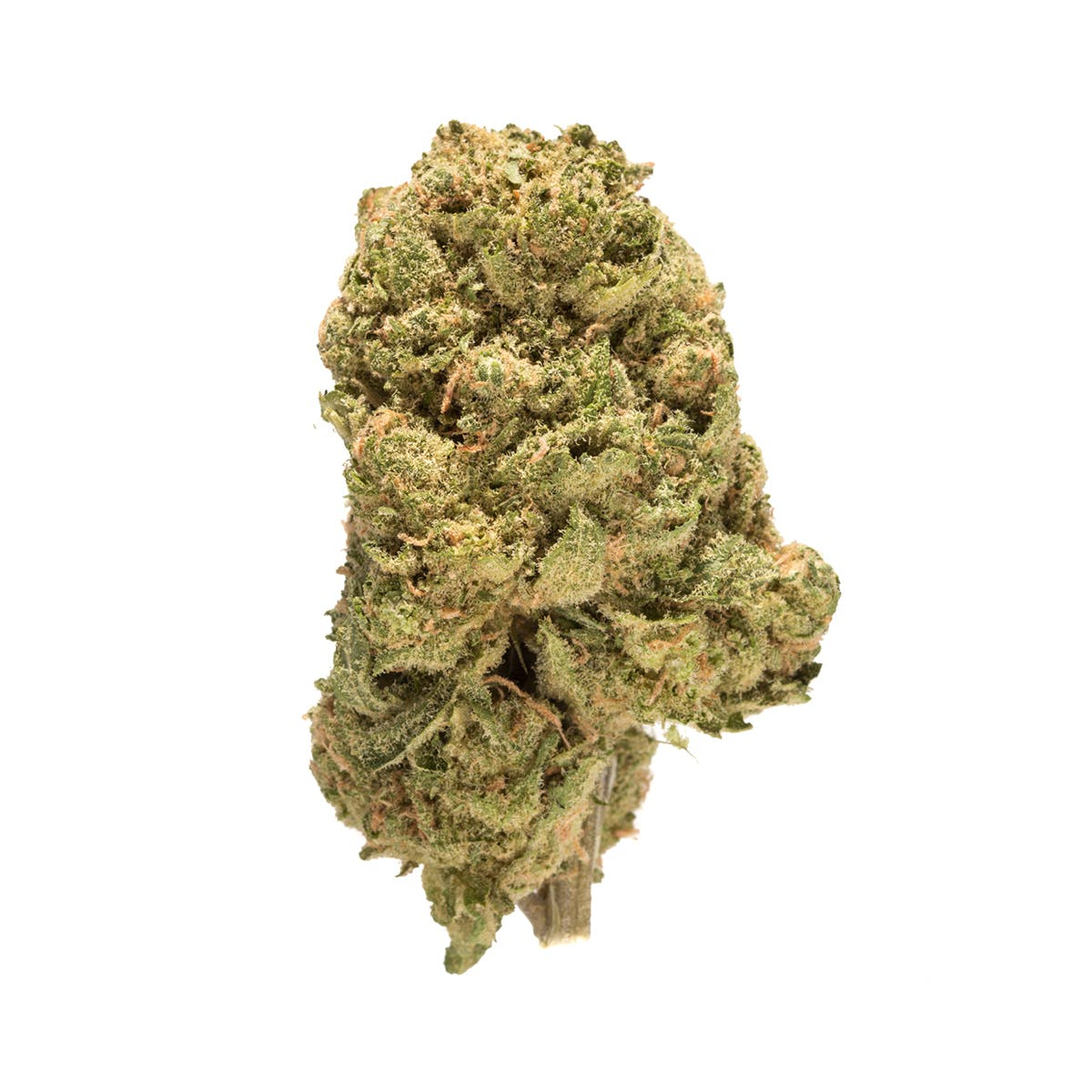 marijuana-dispensaries-floramedex-in-elmwood-park-blueberry-headband