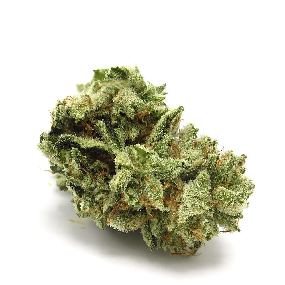 hybrid-bubba-low-shelf-5for25