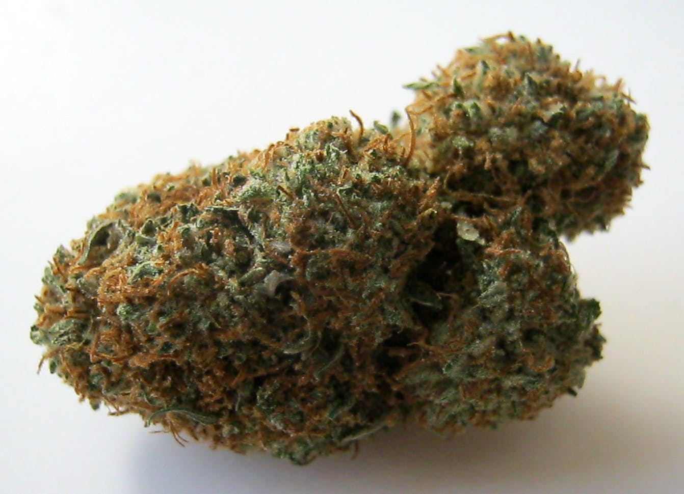 marijuana-dispensaries-thc-35-cap-open-to-2am-in-los-angeles-bubba-og