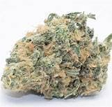 marijuana-dispensaries-520-w-182nd-st-gardena-buddhas-dream