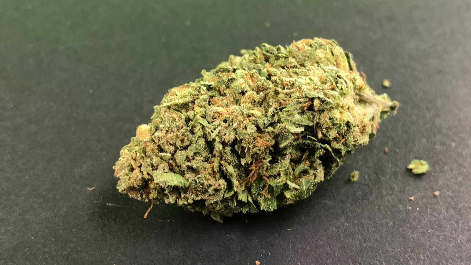 marijuana-dispensaries-20-nw-67th-suite-a-lawton-captain-america-sativa-hybrid