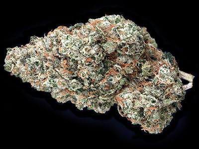 marijuana-dispensaries-golden-leaf-in-steamboat-springs-chemodo-dragon