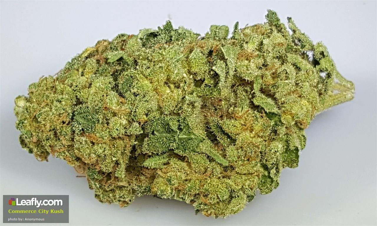 marijuana-dispensaries-420-aga-26frac14-3beybanai-san-juan-commerce-city-kush-23-25-thc