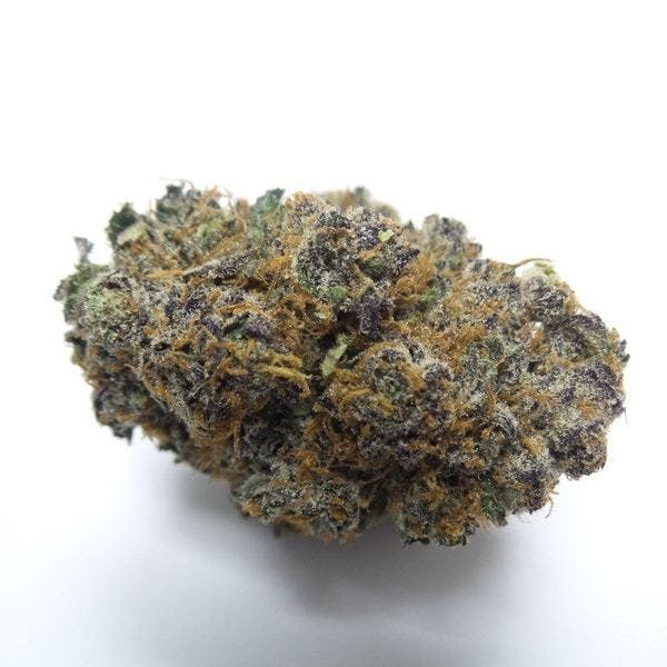 marijuana-dispensaries-kos-la-in-los-angeles-connoisseur-girl-scout-cookies