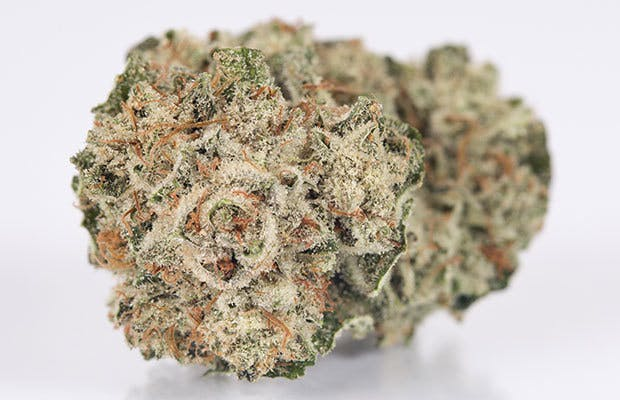 marijuana-dispensaries-8714-vermont-ave-2c-los-angeles-2c-ca-90044-los-angeles-connoisseur-gorilla-glue-234