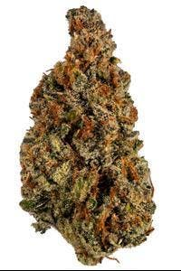 marijuana-dispensaries-8714-vermont-ave-2c-los-angeles-2c-ca-90044-los-angeles-connoisseur-tangie