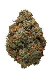 marijuana-dispensaries-8714-vermont-ave-2c-los-angeles-2c-ca-90044-los-angeles-connoisseurgelato