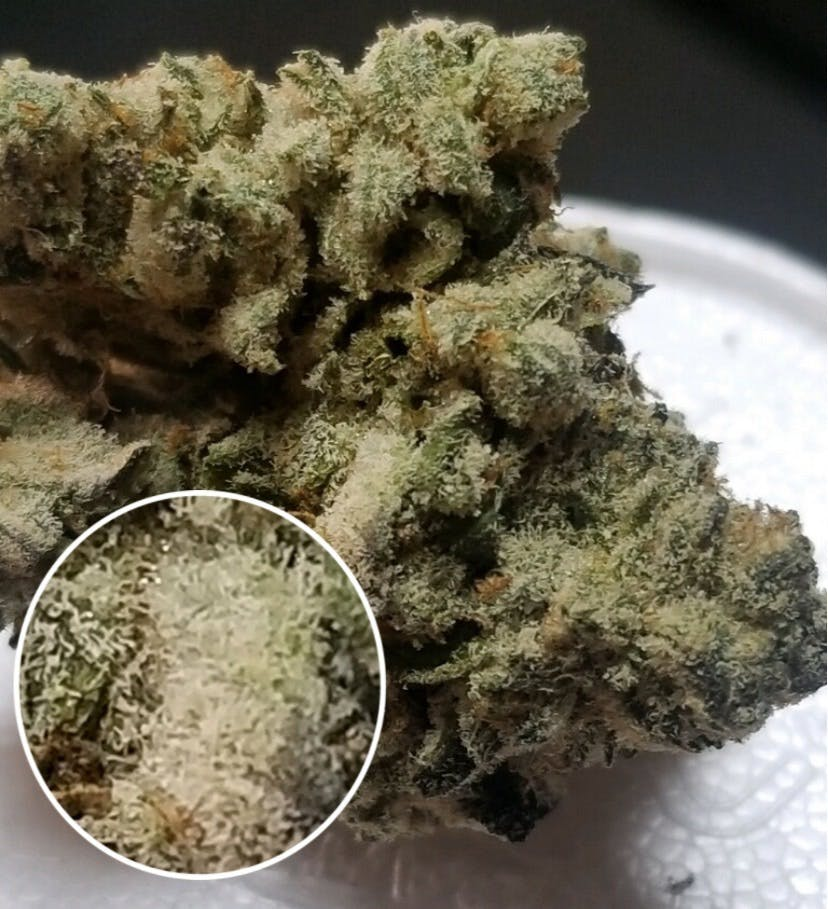 marijuana-dispensaries-2285-south-santa-fe-231-vista-cookie-pucker