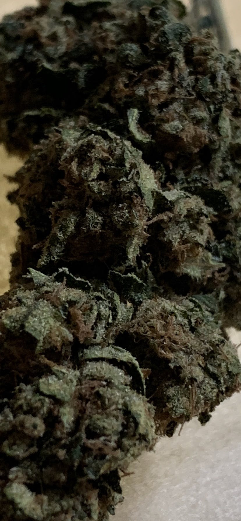 marijuana-dispensaries-2285-south-santa-fe-231-vista-cottage-greens-fire-og