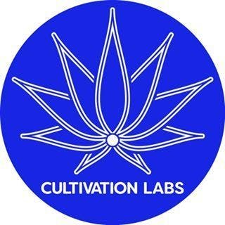 concentrate-cultivation-labs-pineapple-express-rosin-77-42-25-thc