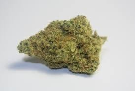 sativa-daily-deal-l-afwreck