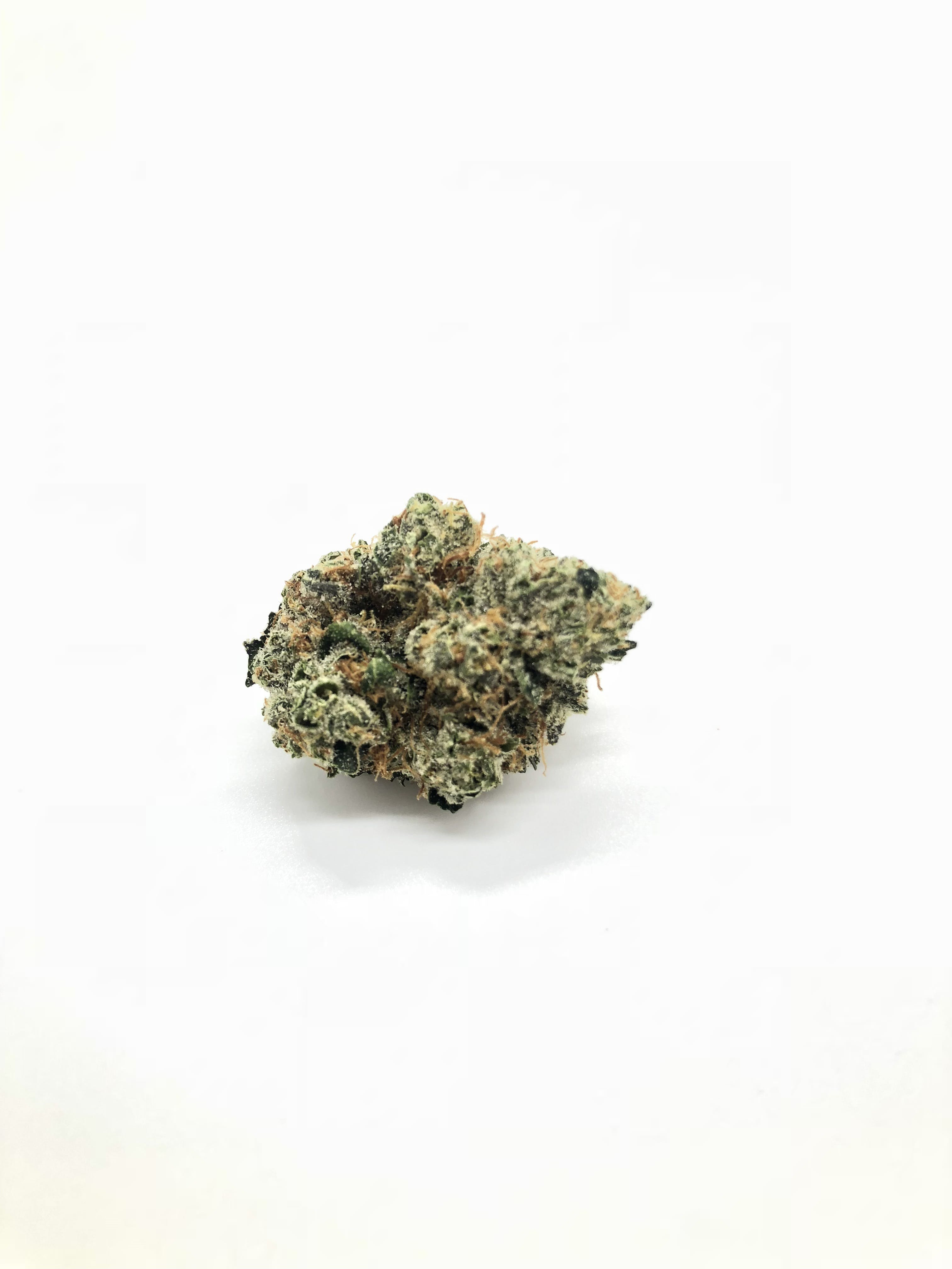 hybrid-daily-deals-lemon-og