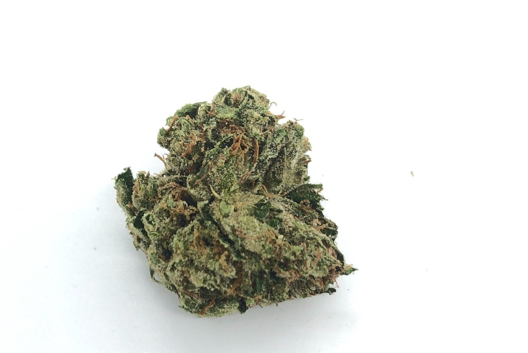 marijuana-dispensaries-333-old-newport-blvd-newport-daily-deals-redwood-og