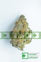 marijuana-dispensaries-champlain-valley-dispensary-vermont-in-burlington-dancehall