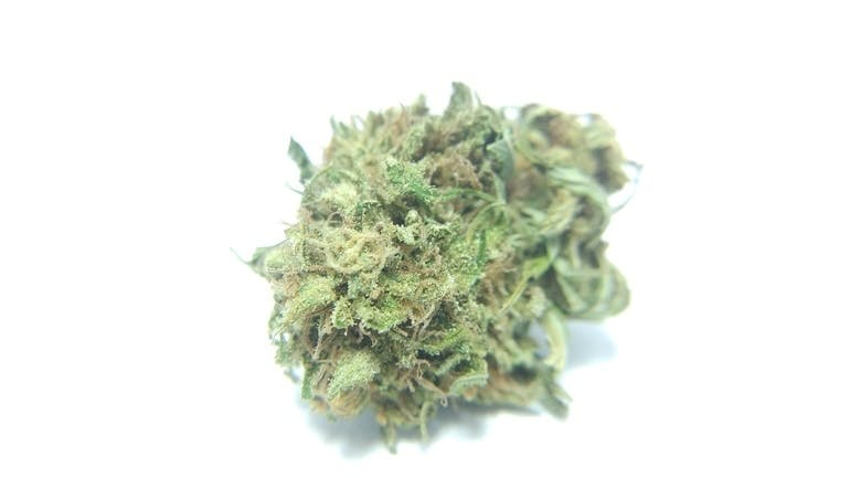 marijuana-dispensaries-5285-old-hwy-2-shannonville-delicious-candy-dc