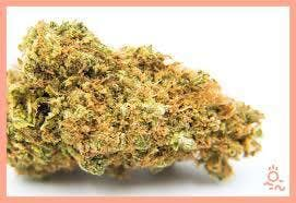 marijuana-dispensaries-redeye-420-in-tulsa-durban-poison