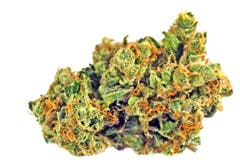 sativa-east-coast-sour-diesel-ataraxia