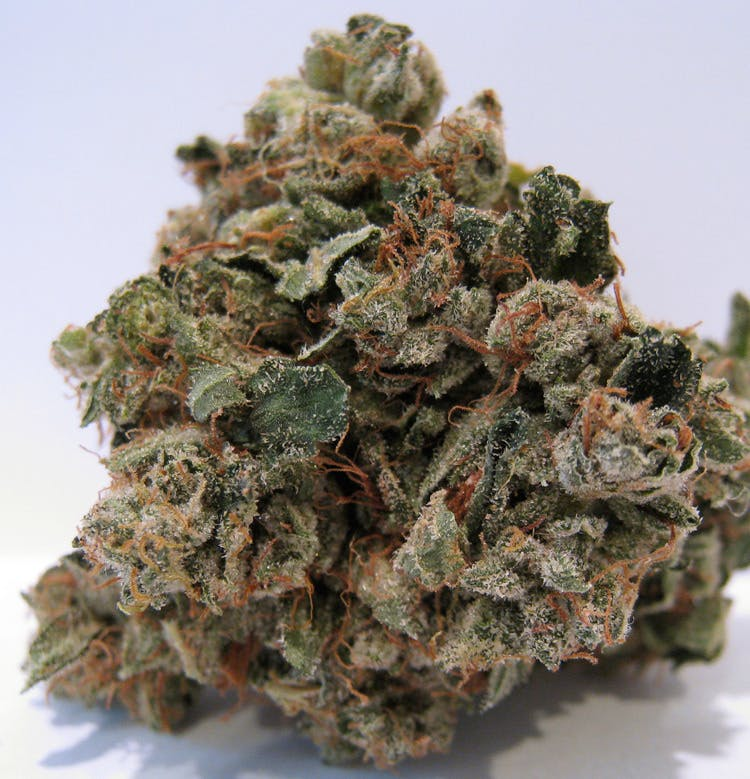 indica-exclusive-abusive-og-5g40-2oz390-qp760