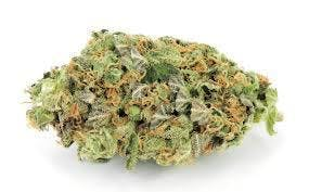hybrid-exclusive-girl-scout-cookies-5g40-2oz390-qp760