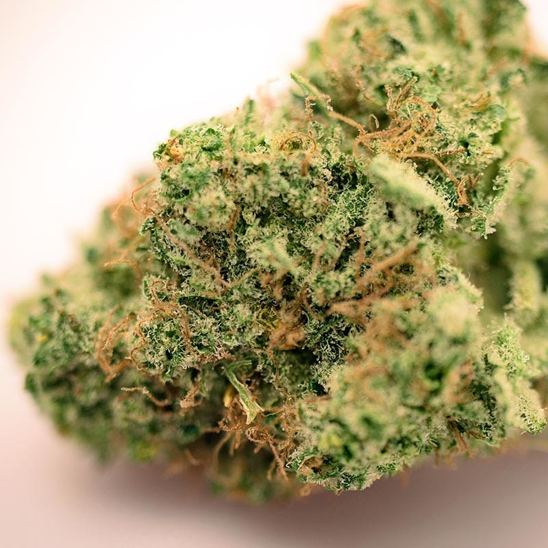 hybrid-exclusive-sweet-tooth-2oz270-qp530